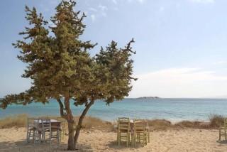 naxos-restaurant-16